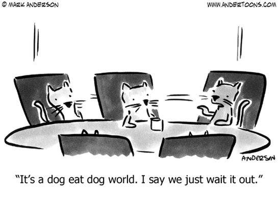 It 39 S A Dog Eat Dog World But You Don 39 T Have To Bite