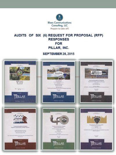 proposal audit report